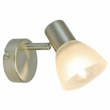 Настенно-потолочный светильник Arte Lamp Parry A5062AP-1SS.